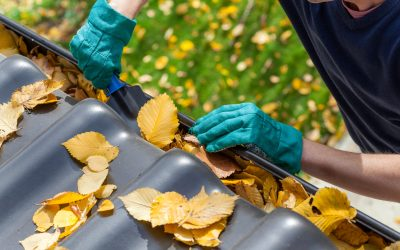 Weekly And Monthly Maintenance Tips For Your New Home