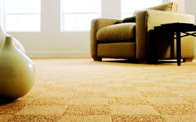 The Pros And Cons Of Carpet Flooring For Your New Almonte Home