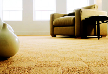 carpet house. the pros and cons of carpet flooring for your new almonte home house o